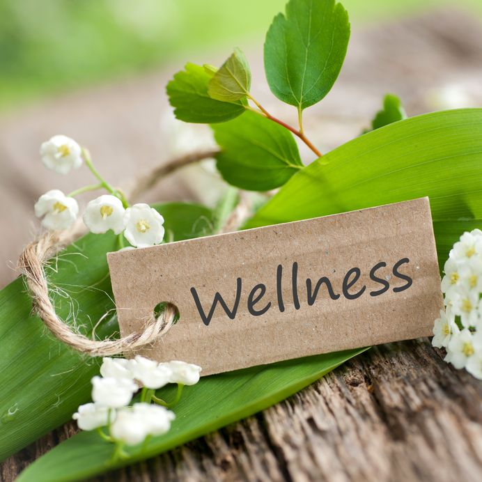 Antrenor de wellness