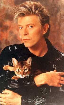 Mostenirea lui David Bowie si impactul asupra artistilor de culoare